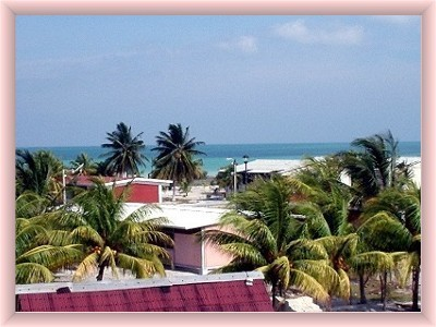 view from rooftop of isla holbox